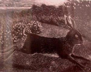 Tom and Julia Bolton hare print