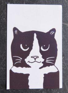 fridge magnet, magnet, vinyl magnet, cat fridge magnets, jane adams, presents for cat lovers, cat gifts, cat themed presents, black and white cat, pawprint designs