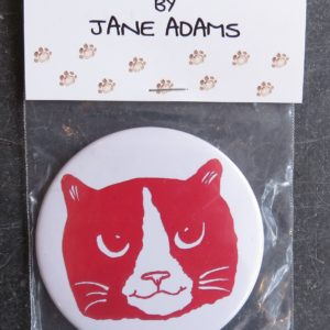 handbag mirror ginger and white cat face