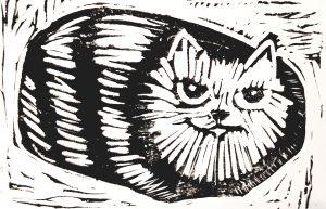 cards, card, birthday card, greetings card, tabby cat