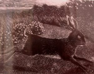 Tom and Julia Bolton hare print